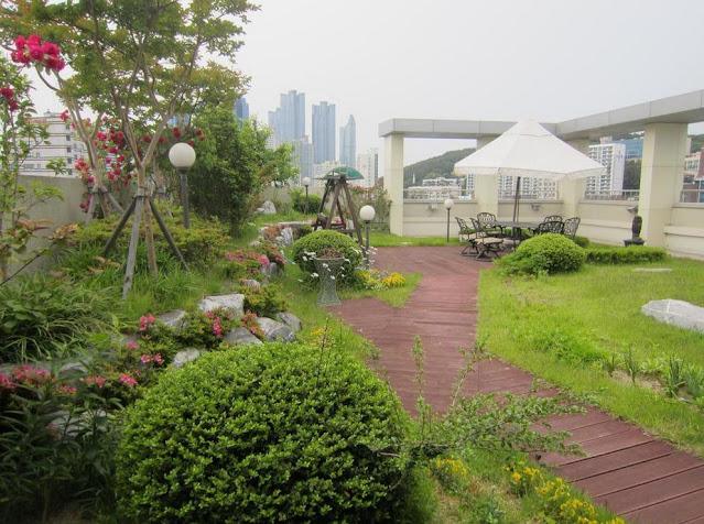 hostel terbaik di korea selatan