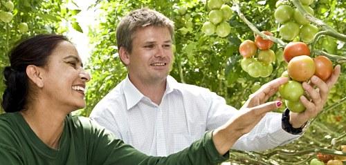 La recogida de fruta es uno de los empleos más demandados en Nueva Zelanda