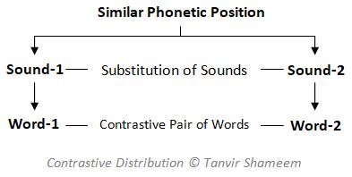 Contrastive Distribution