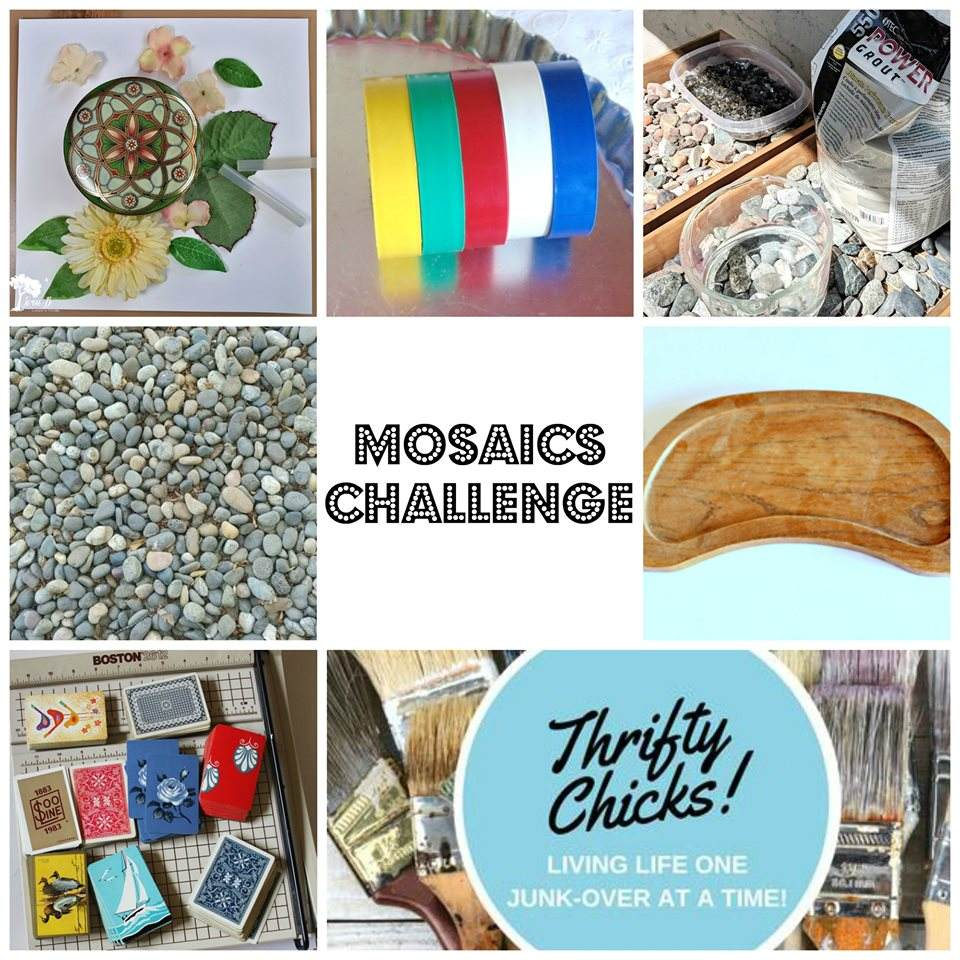 Thrifty Chicks Challenge Before Pictures