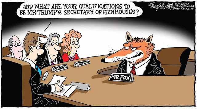 Senate Committee seeking testimony from Mr. Fox:  Tell us, Mr. Fox, what are your qualifications to be Secretary of Henhouses?