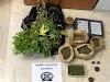 Σύλληψη 70χρονου για ναρκωτικά στην Κόρινθο