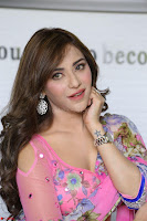 Angela Krislinzki Rogue Movie Fame Telugu Actress in Saree Backless Choli 022.JPG