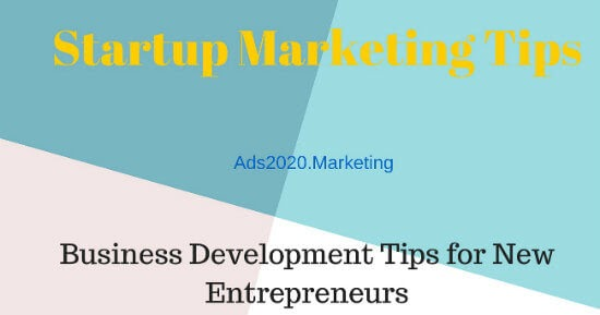 top business ideas for entrepreneurs