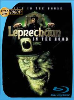 Leprechaun 5  2000 HD [1080p] Latino [Mega] dizonHD