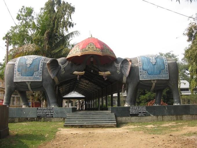 Kaziranga, Majuli, Jorhat & Dibrugarh (7Days)