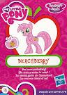 My Little Pony Wave 14 Beachberry Blind Bag Card