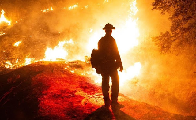 Salute to Firefighters; Selfless Battling to Flames in California amid the Record Heat