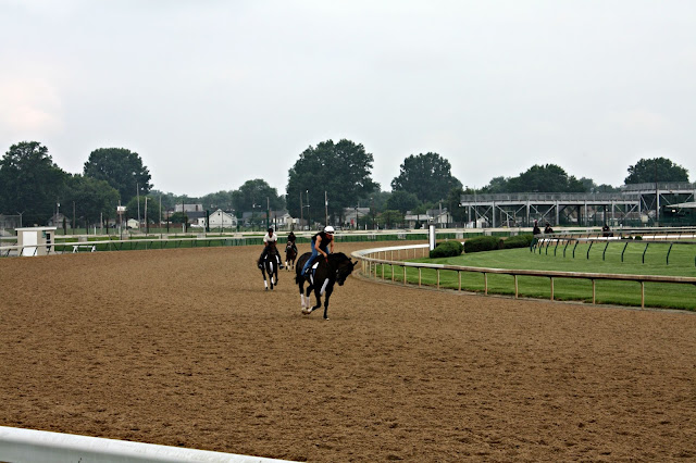 Horses exercising at the site of the Kentucky Derby
