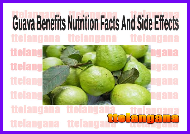 Guava Benefits Nutrition Facts And Side Effects