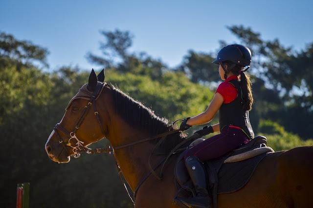 Co to znaczy pracować z koniem od tyłu do przodu i jak to zrobić?