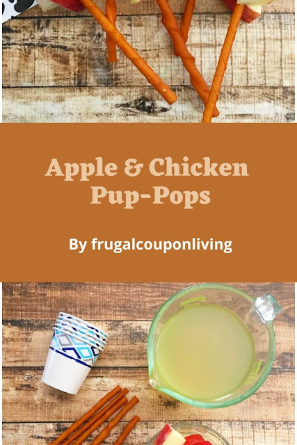 Apple And Chicken Pup-Pops Dog Treat