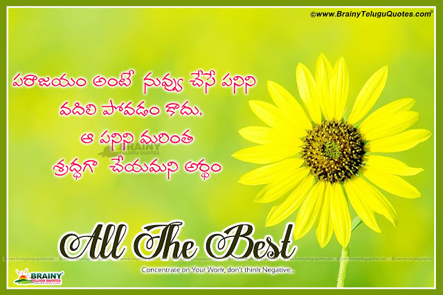 All The Best Quotations for Your Boss in Telugu Language, Top inspiring All The Best Quotes in Telugu For Exams, Students All The Best Quotes and Messages Greetings Online, Awesome Telugu language All The Best  Thoughts, Whatsapp All The Best  Magic Images, Telugu All The Best  My Dear Images, Inspirational All The Best  Wishes and Quotations.