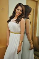 Raashi Khanna New Stills at Jil Event HeyAndhra.com