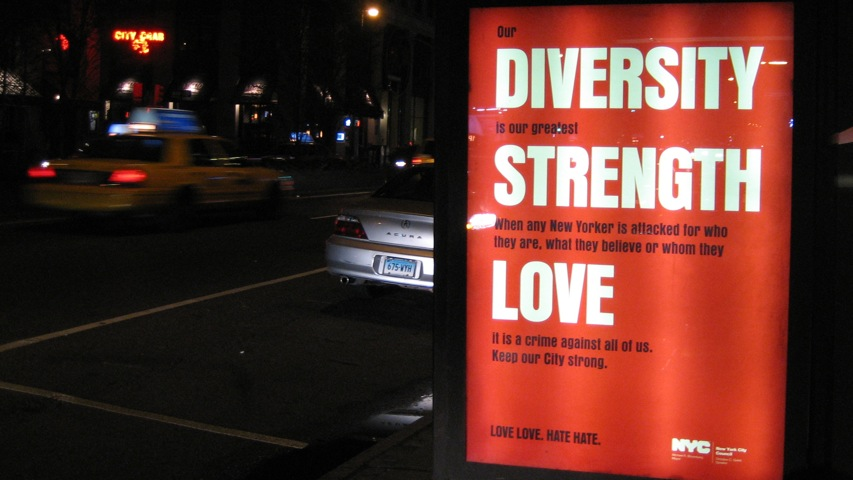 Diversity is our strength essay contest