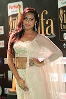 Prajna Actress in backless Cream Choli and transparent saree at IIFA Utsavam Awards 2017 0135.JPG