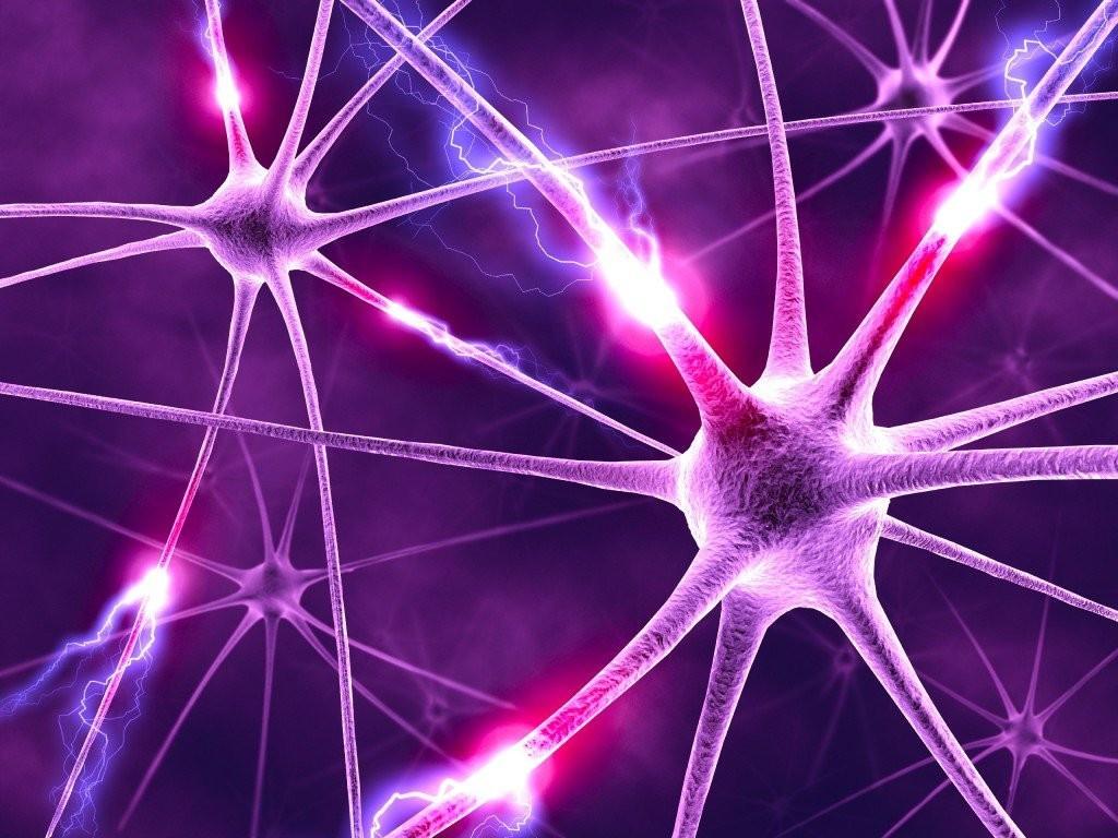 Cos'è è una rete neurale?