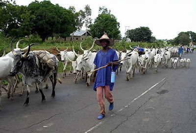 Governor Fayose and Herdsmen in Ekiti state
