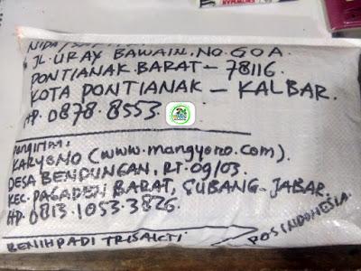 Benih padi yang dibeli   NIDA Pontianak, Kalbar.  (Setelah packing karung ).