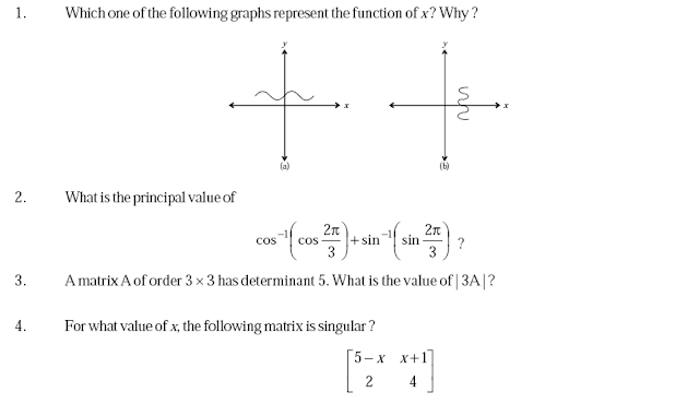 CBSE MATHEMATICS Sample paper for   Class 12