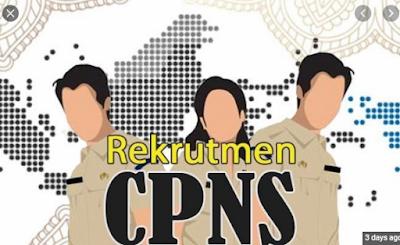 Rekrutmen CPNS 2020, Catat Ini Kreteria ASN yang Dipilih KemenPAN RB, Kesempatan Bagi yang Profesional