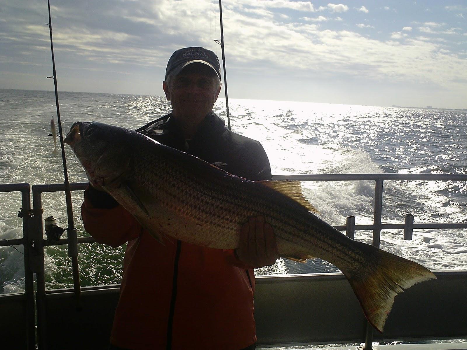 Nj salt fish 2017 11 16 seahunter atlantic highlands for Atlantic highlands fishing report