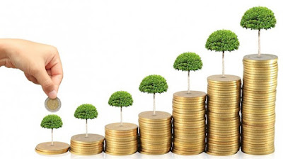 beberapa-contoh-investasi-untuk-pemula