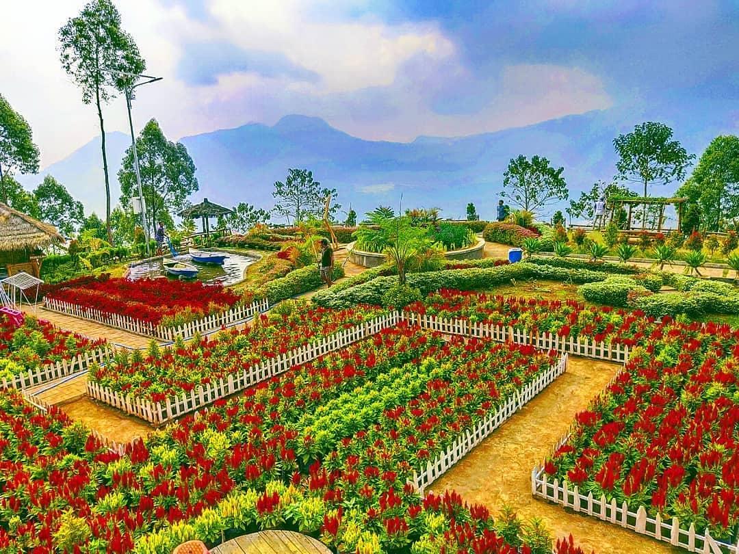 Bukit Nirwana Pujon Kidul Malang Tiket Masuk Dan Lokasi Wisata Mantap