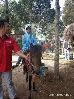 Kuda wisata genilangit