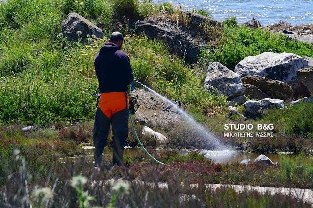 Με επιτυχία προχωρά το εβδομαδιαίο πρόγραμμα καταπολέμησης κουνουπιών στο Δήμο Ναυπλιέων