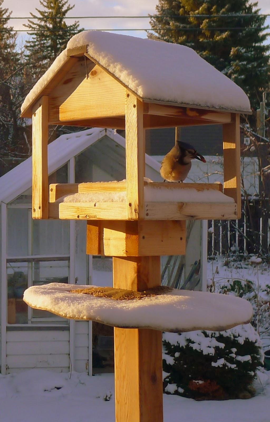 Backyard Garden Wooden Bird Feeder Stand And Feeder Tube