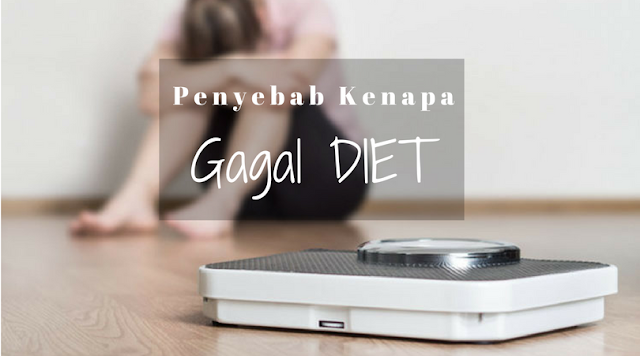 Penyebab Kenapa Anda Gagal DIET