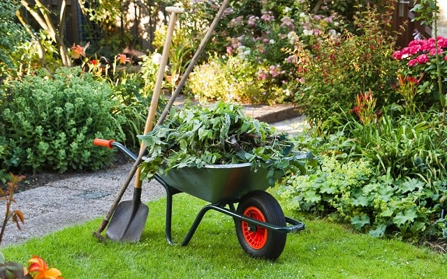 garden-waste-removal-bin