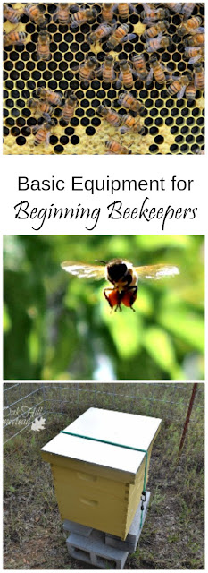 Basic equipment for beginning beekeepers - how to save money on the basics. Oak Hill Homestead.com