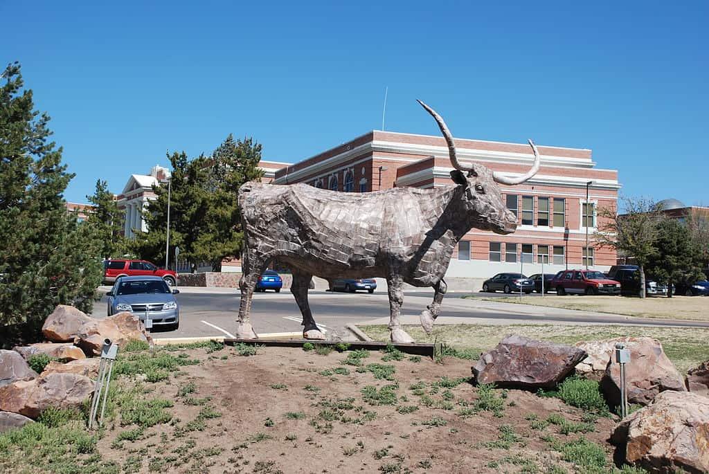 Farrier Schools in Texas