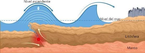 Los sismos con magnitudes mayores a 7.0Mw, son la fuente principal de generación de Tsunamis.