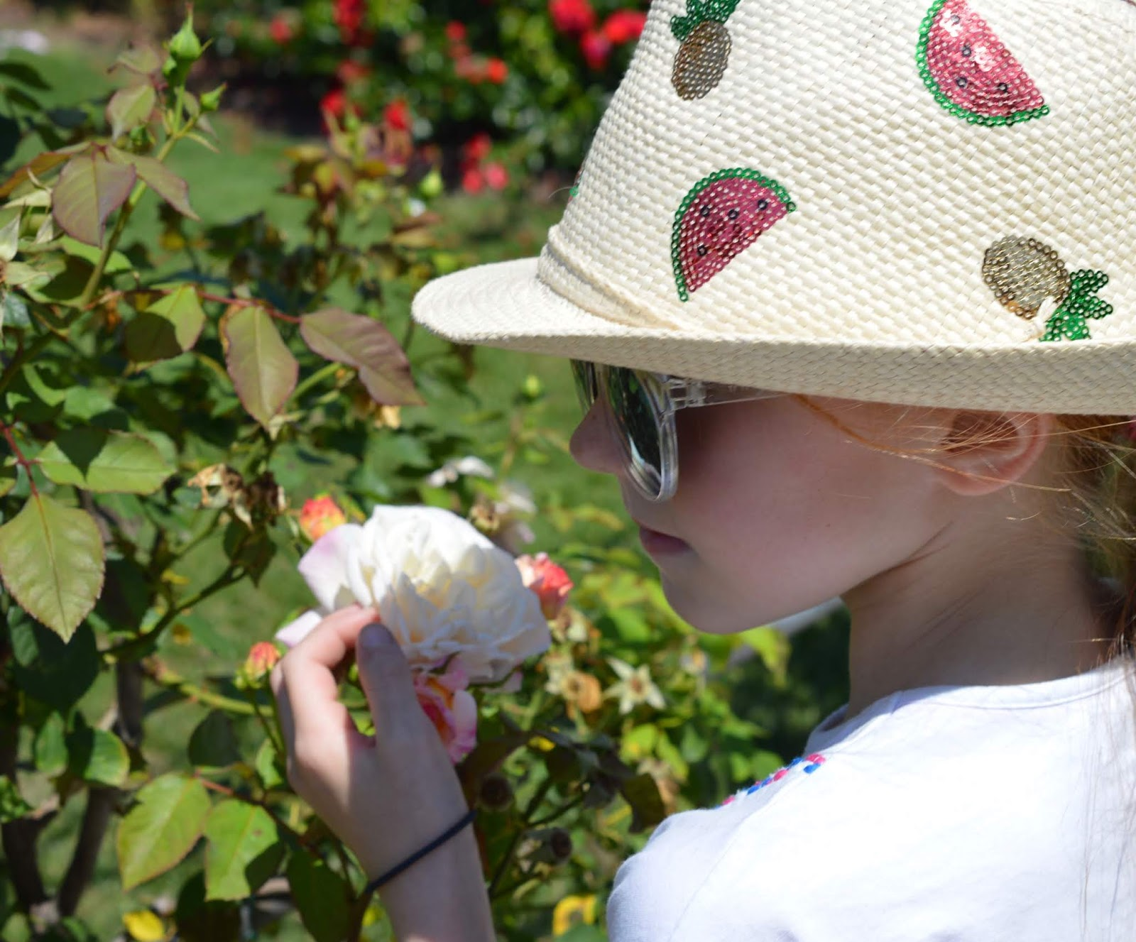 How to spend a weekend in Genoa with kids - Nervi award winning rose garden