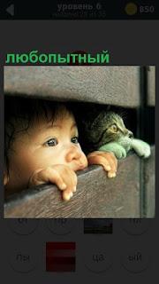 Сквозь щели в досках высунулись головы любопытных мальчика и кошки