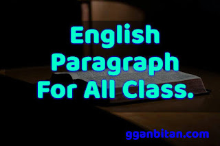 Paragraph writing pdf