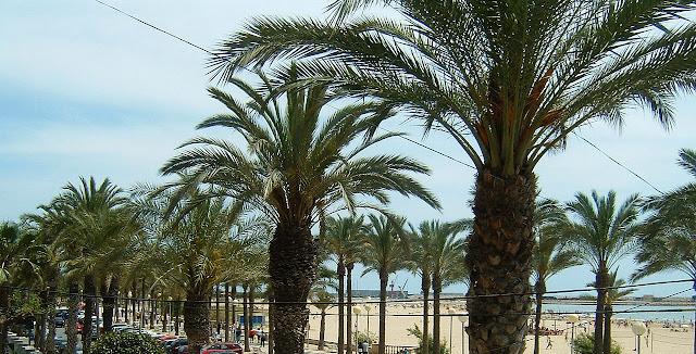 Passeig de Ribes Roges de Vilanova i la Geltrú