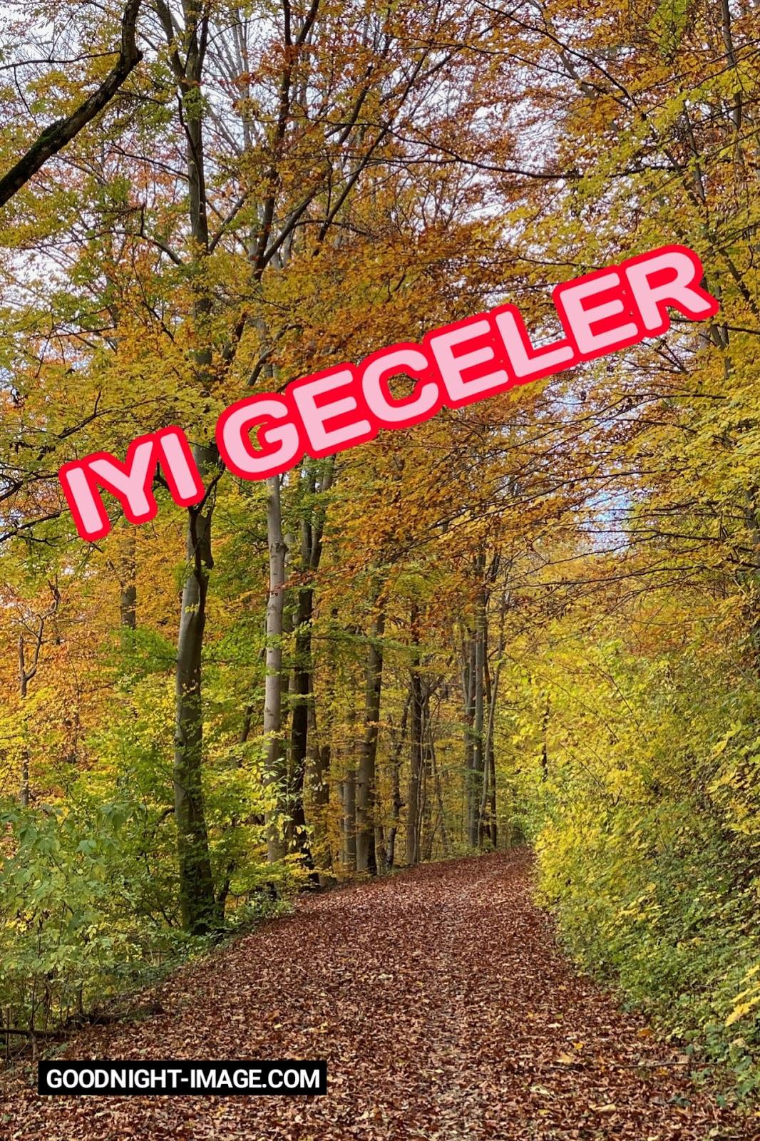En Iyi Iyi Geceler Mesajı G 246 R 252 Nt 252 Leri Resimleri Fotoğrafları Goodnight Turkish Good Night Image