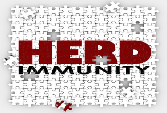 Cek Fakta : Indonesia Terapkan Herd Immunity?