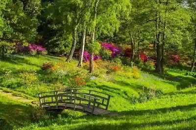 حديقة الملك فهد بالطائف