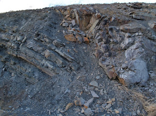 Close up view of folding and faulting of the Sussex road cut