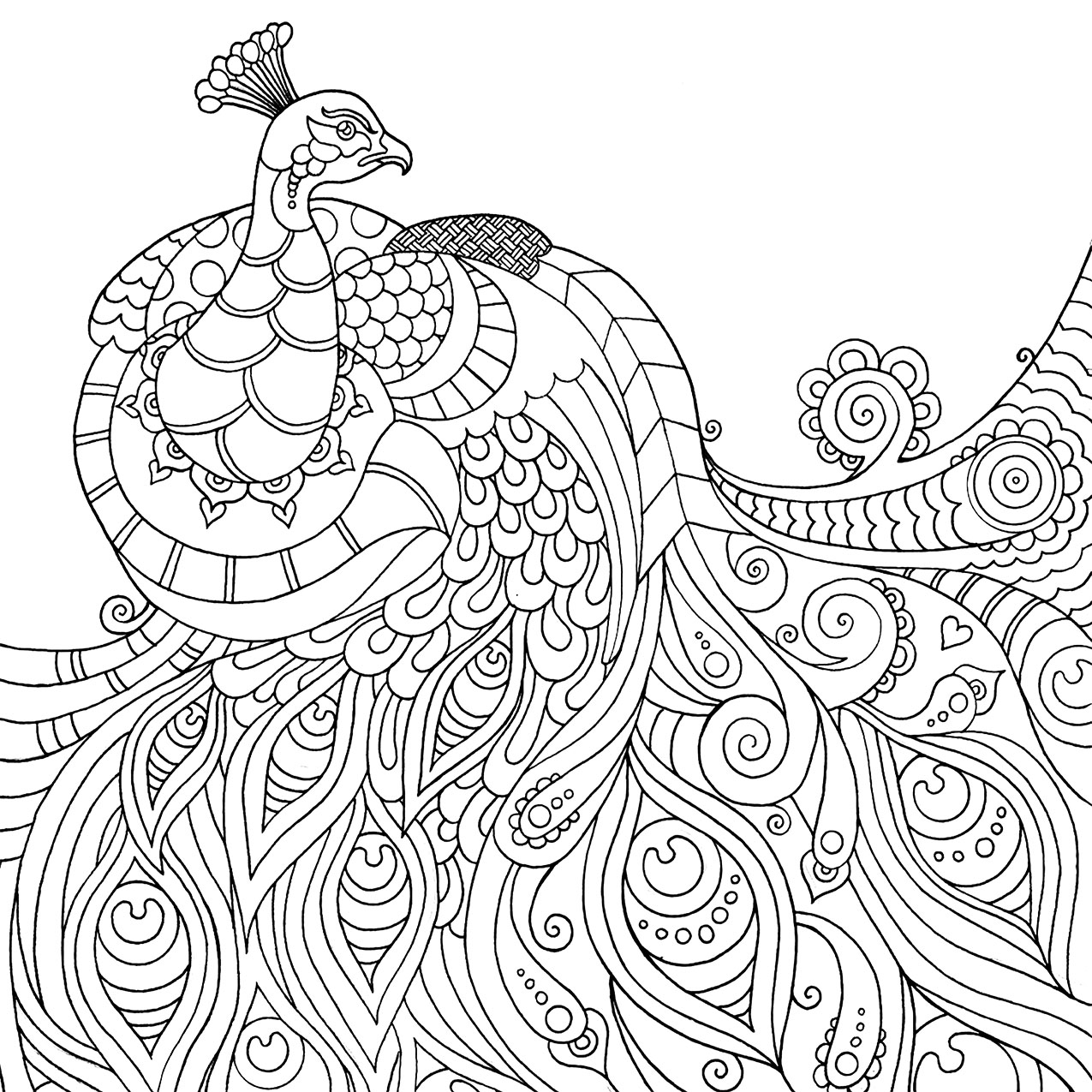 Terms Coloring Book Image To Find Thousands Of Additional Examples Make Sure Save The Example Your Computer Flash Drive And Or Online Storage