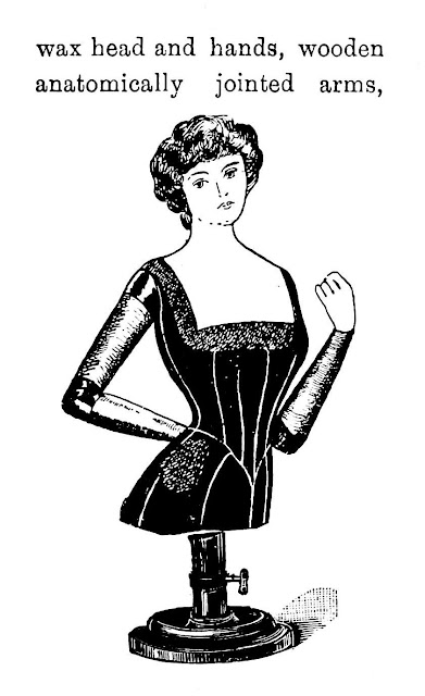 1904 mannequin illustration from a catalog