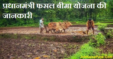 What is the benefit of Prime Minister Crop Insurance Scheme