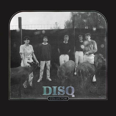 Disq - Collector (2020)