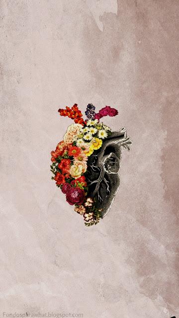 Fondo de Corazón y flores