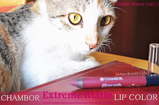 Chambor Extreme Matte Long Wear Lip Colour  Review, Swatch, Price, Buy Online